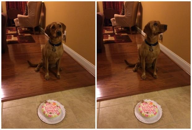 hermione 3rd birthday